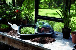 green-basics-grow-house-i1