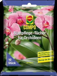 orhidee_ratid