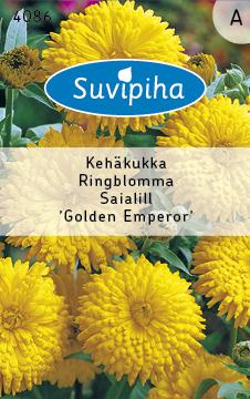 40860 saialill Golden Emperor