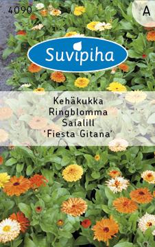 8711117409007_Saialill_Fiesta_Gitana_madal_Suvipiha