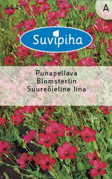 8711117444503_Suureõieline_lina_Suvipiha