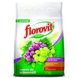 Florovit_viinamarjavaetis_1kg