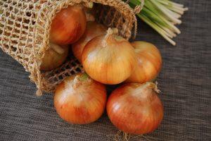 onion-2404583_1920